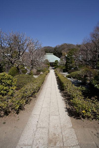浄妙寺境内。
