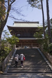 円覚寺三門も春らしい感じになってきました。