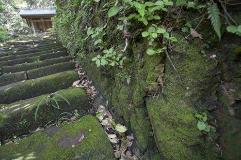 階段脇の掘削跡は明らかにノミを使って手作業で削られた跡です。行基、源頼義、義家、頼朝、いずれの時のものかなどと想像が膨らみます。