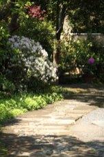 浄妙寺、喜泉庵入口付近の躑躅(ツツジ)。