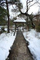 神苑牡丹園。お目当ての牡丹にいきつくまでの景色もなかなかです。