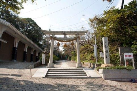 国道から見える神社の鳥居。
