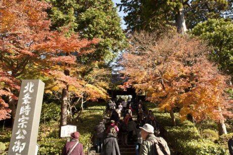 まずは円覚寺。門前から紅葉が迎えてくれます。