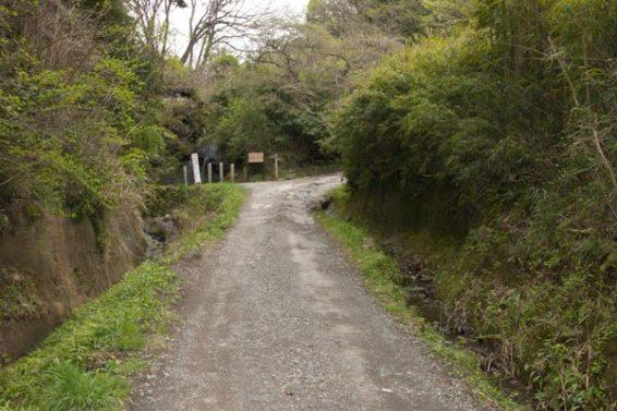 十二所から朝比奈切通しに向かってしばらく歩きます。