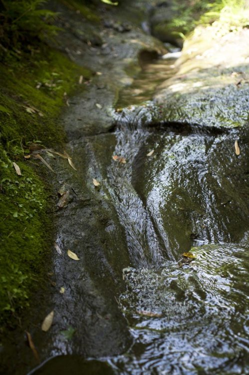 朝比奈切通しの水