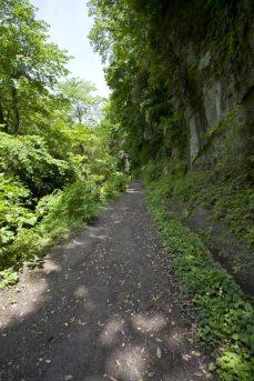 右から岩壁が迫ります。左右にきれいな山水が流れます。