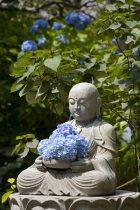 明月院のあじさい。開山堂付近の花地蔵様。