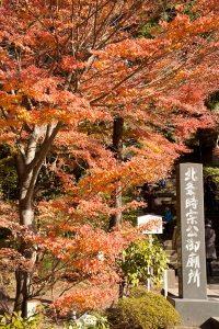 円覚寺門前の紅葉。