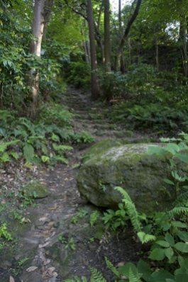 大町方面の道。登りが逗子方面下って行くと大町へと出ます。