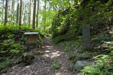 朝比奈切通しを歩き、中程にくると熊野神社の入口が見えてきます。
