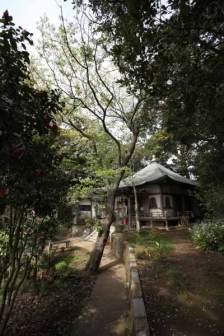 龍口寺七面堂を後にして五重塔へと向かいます。静かな山道に癒されます。