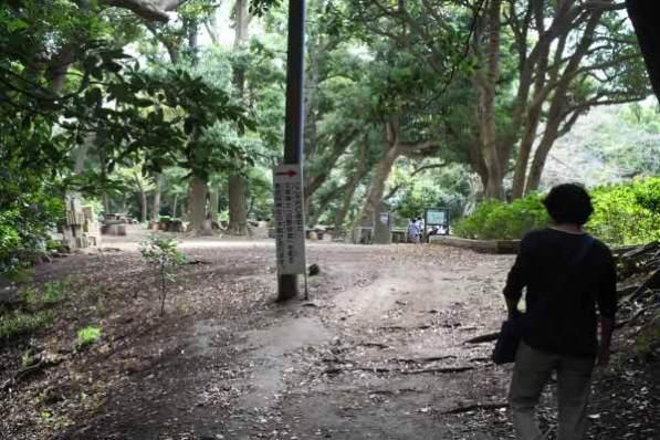 葛原岡・大仏ハイキングコース。葛原岡神社前に出ました。