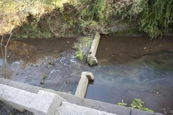 蛭子神社は滑川沿いにあります。子供の頃、小町近辺の友人とここから川に降りて遊んだものです。