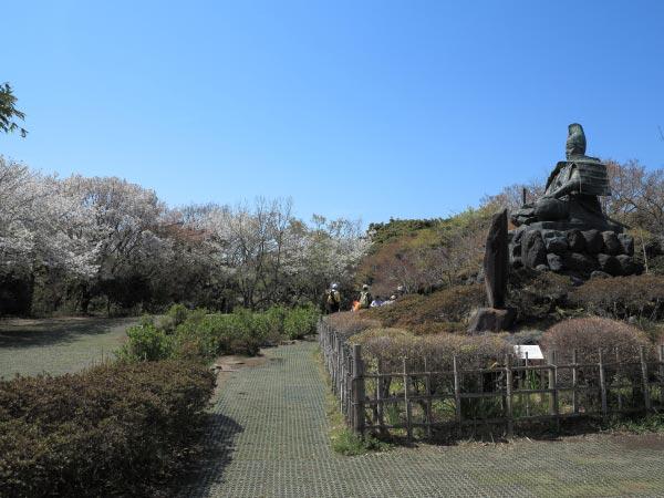 源頼朝から遡ること3代、武神と崇められる源義家はこの地において後三年の役における必勝を祈願しました。源氏ゆかりの源氏山は鎌倉市民の王道花見スポットです。