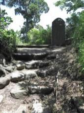 飛柏槙(ビビャクシン)の石碑がみえてきます。