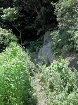 鐙摺城址(鐙摺山)はわずは25メートルの高さですが、少し尾根道を上ります。