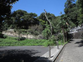 数分登れば神武寺境内がみえてきます。