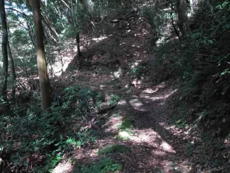 尾根道ですが道が広くつくられています。(進行方向反対からの写真)