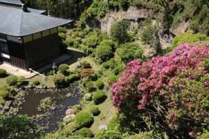仏行寺境内背後の山は躑躅(ツツジ)一面に植えられています。