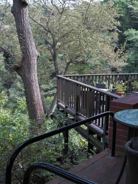 樹ガーデンの屋根のある席。取材時は改装中で使用禁止でした。