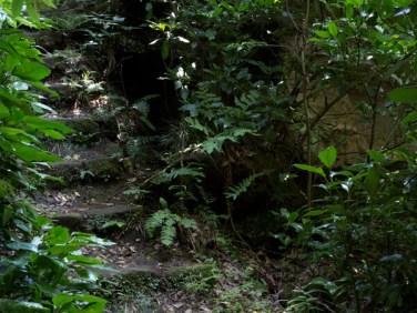 巡礼古道にある大きなやぐら。石段とあわせて見惚れるような凄みがあります。