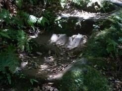 巡礼古道の石段は永い年月を経て削られています。鎌倉石の滑らかに削られた姿に本能的に魅了されます。