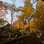 箱根、長安寺の紅葉。