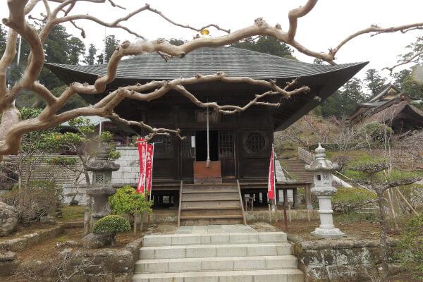 清澄寺、観音堂。見事な百日紅(サルスベリ)です。夏はさぞかし鮮やかでしょう。