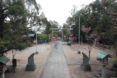天津神明宮の御正殿から見渡す境内の様子。