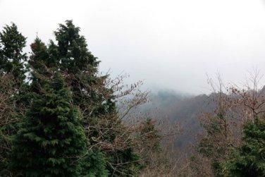 大山阿夫利神社本社からの景色。この日は曇りで視界が悪く、残念でした。【大山阿夫利神社】