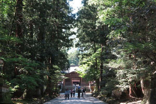 彌彦神社、随神門に向かう参道。