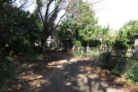 伊豆山神社。本宮への参拝路。