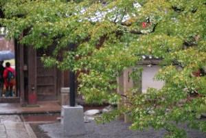 修禅寺。この年は紅葉が遅く、11月入ってもこの通りでした。