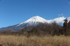 「富士の巻狩り」石碑の近くにある風の湯温泉あたりからの富士山。こちらは近代建築物がなくてきれいです。