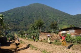Parque Nacional de los Volcanes en Ruanda