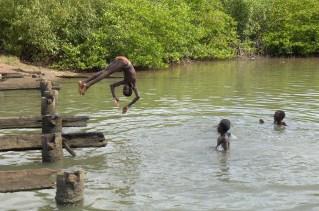 GAMBIA. Niños bañándose en los manglares.