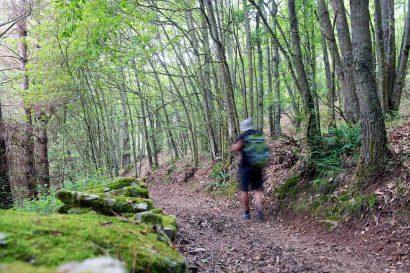Camino Primitivo por Asturias_23