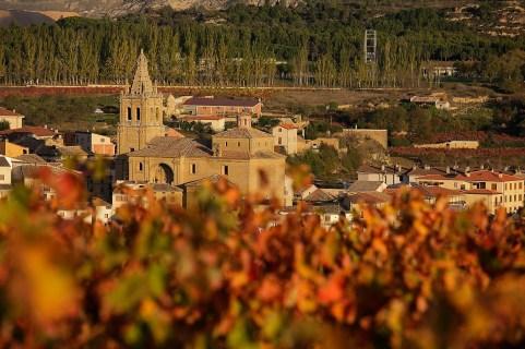Viñas en otoño, Rioja Alta, DOC Rioja, al fondo, Briñas,Haro, la Rioja