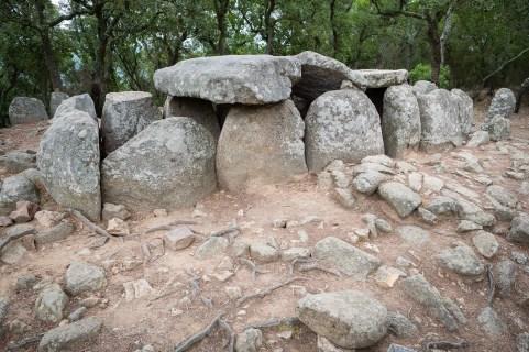 Dolmen de la Cova d'en Daina.