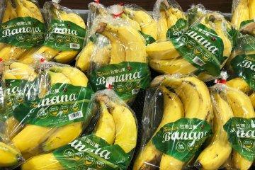 香蕉畢竟是彎曲的