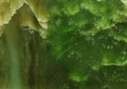 Green Bowenite