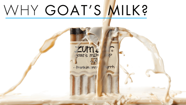 Goat Milk Bath Products: How They Help Improves Your Skin