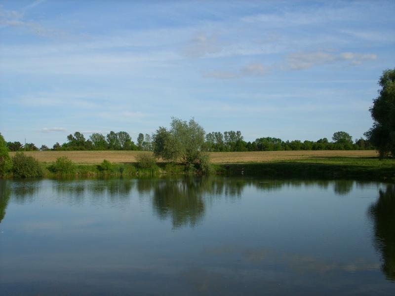 Озеро между Муринами и Каменцем (бывший кирпичный завод)