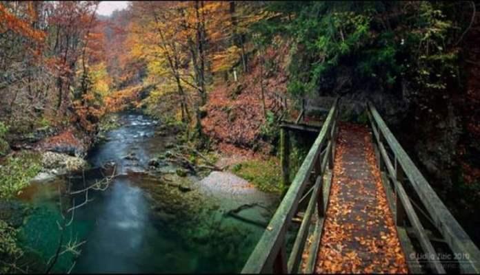 1 jesen