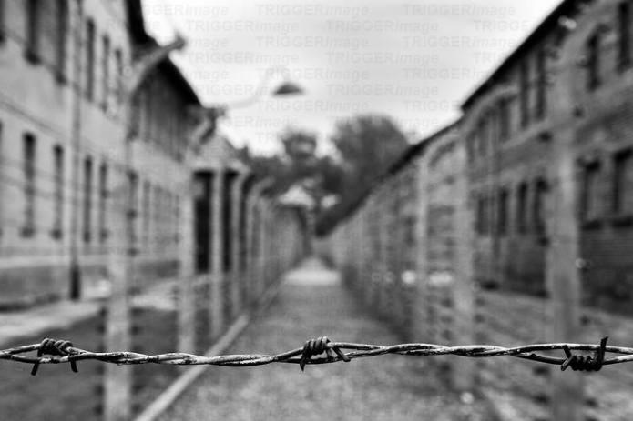 koncentracijski logor žica