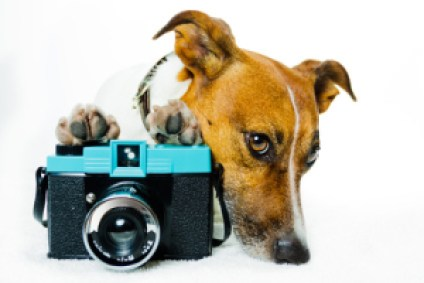 Kameraservice