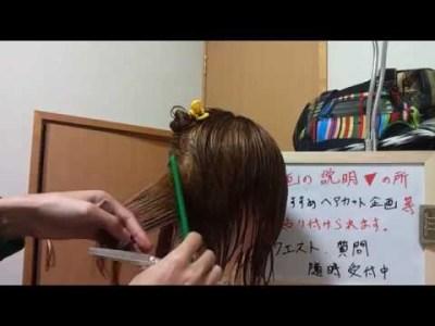 浜崎あゆみ m 髪型 切り方 解説 芸能人 ヘアスタイル ショートボブ《新》ヘアカットの仕方8