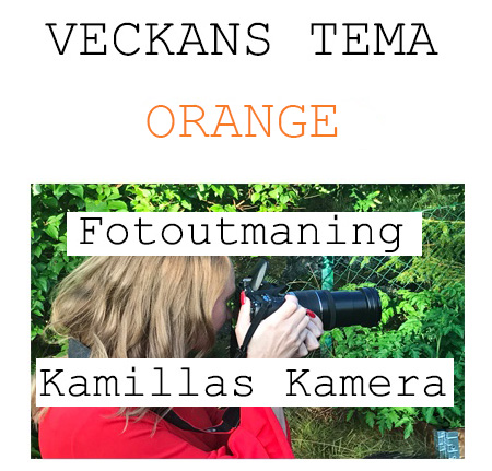 fotoveckans ORANGE