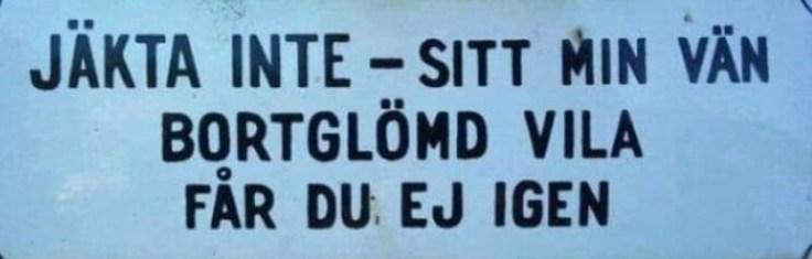 img_8590