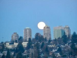 warm moon